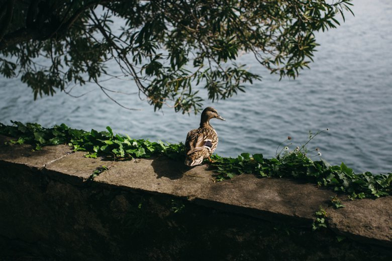 GemmaCliff_LakeComo_ItalyWedding_ZoeCampbellPhotography_0099