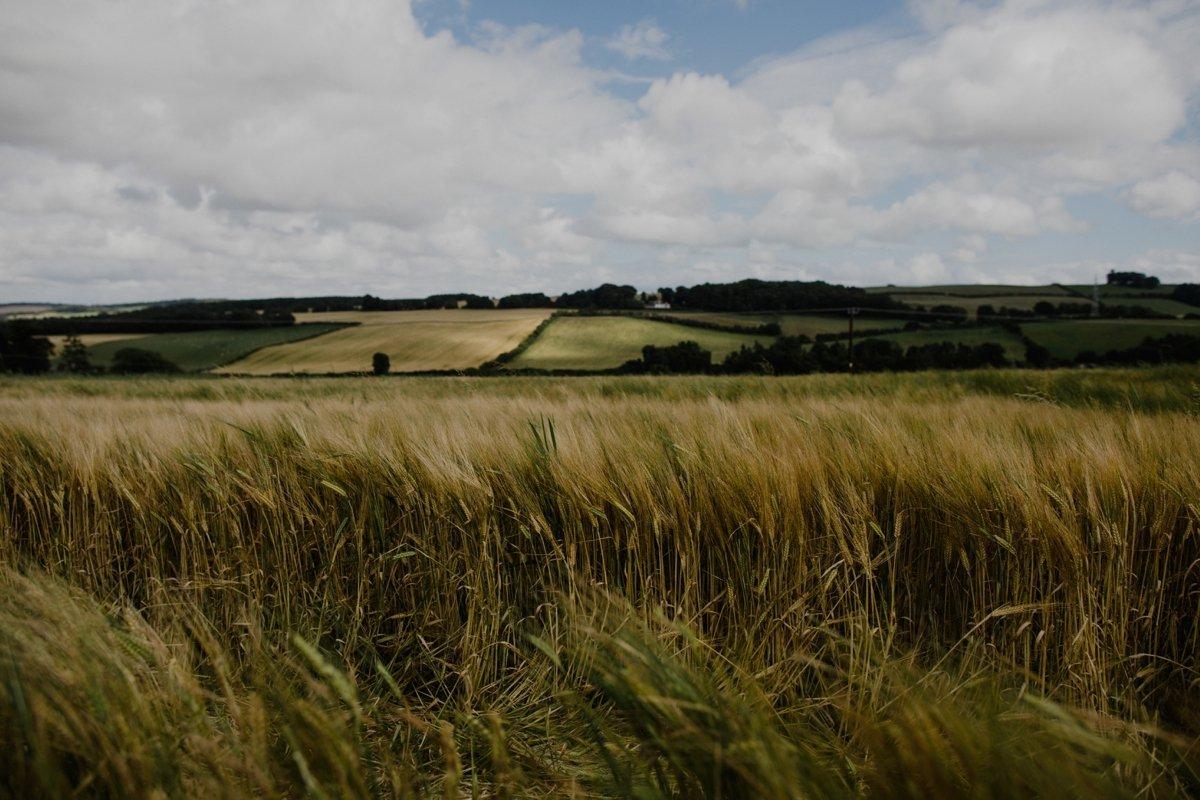 hay field in bonjedward scottish borders
