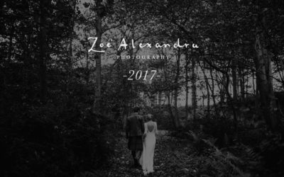 2017 // Weddings, engagements and adventures
