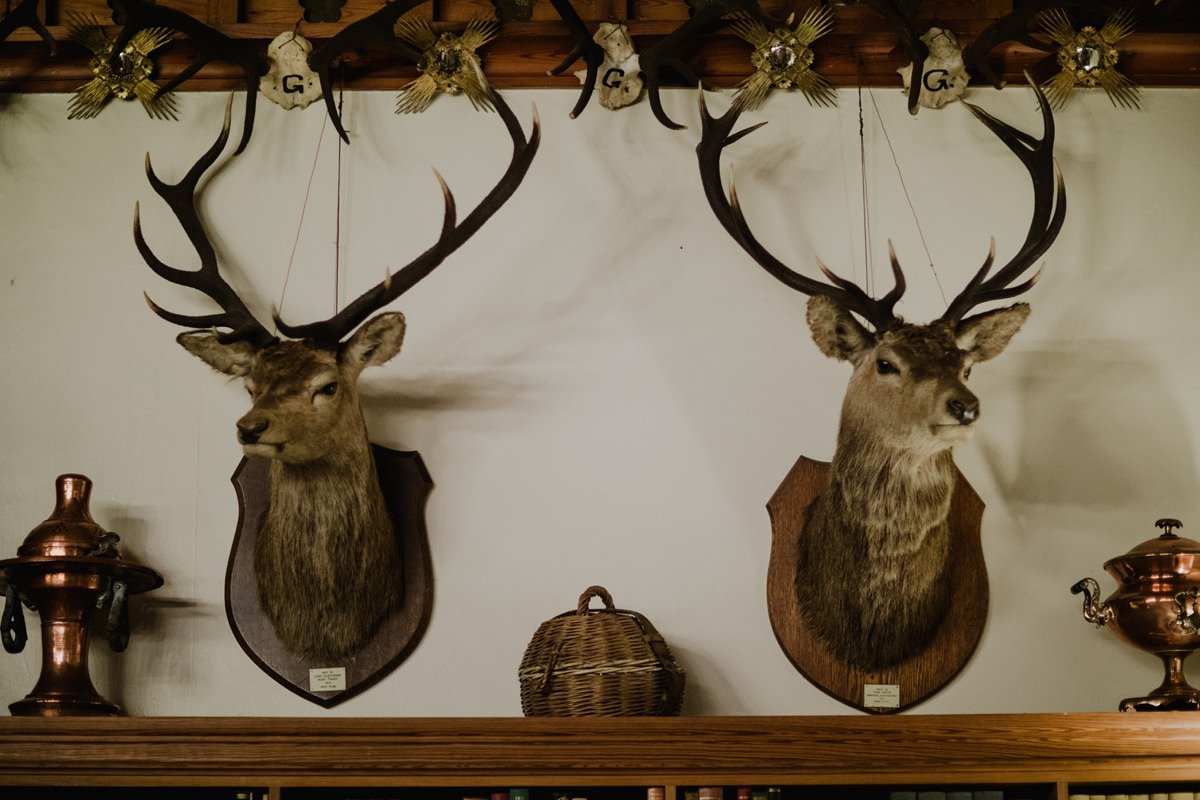 Mounted Stags heads on the wall at Glen Tanar Ballroom