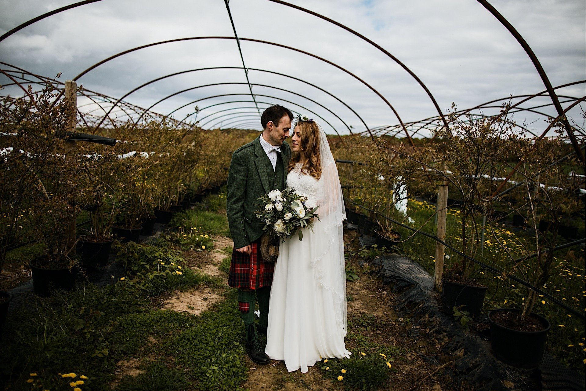 frame bride in groom posing and polytunnel