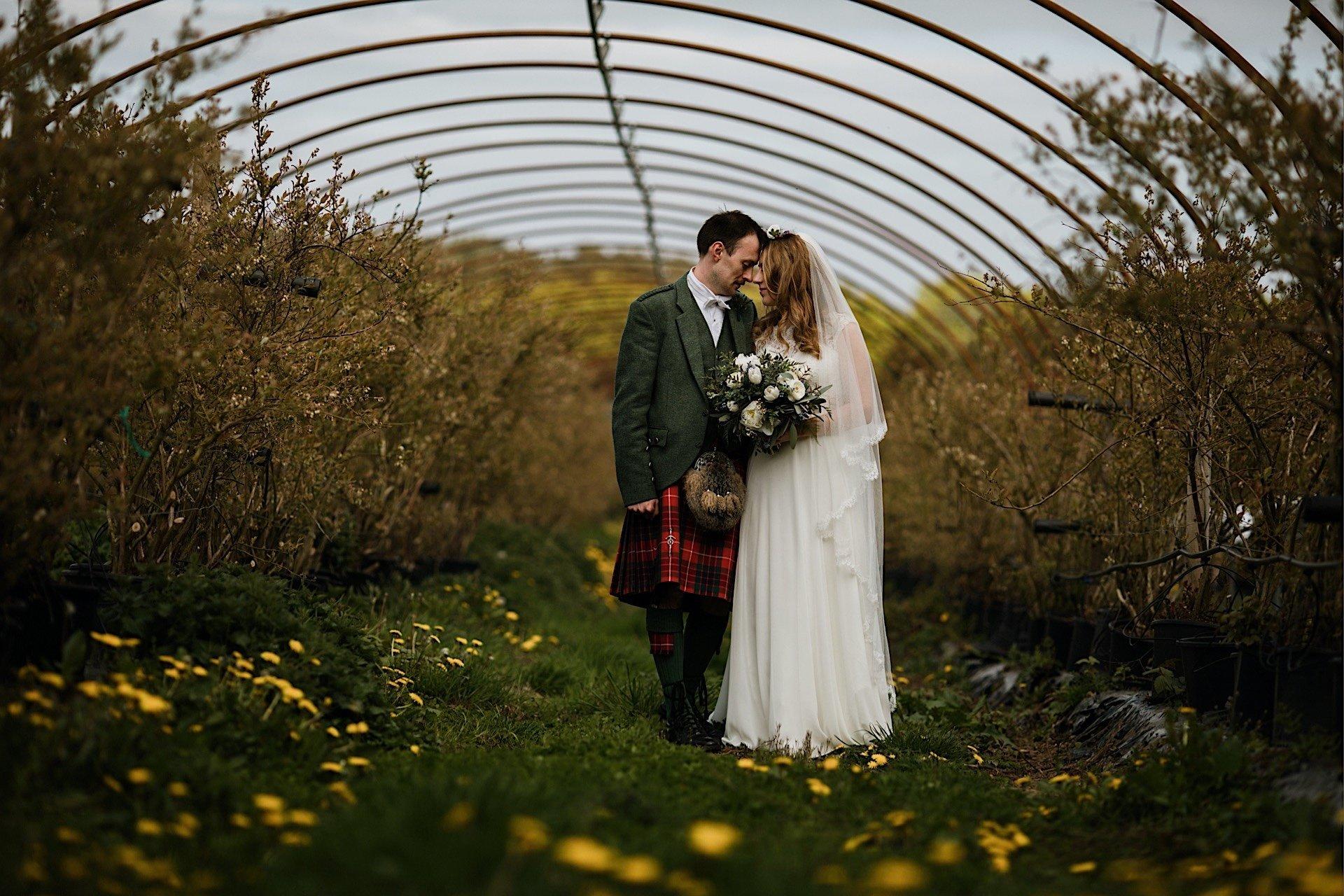 polytunnel bride frame groom posing and under