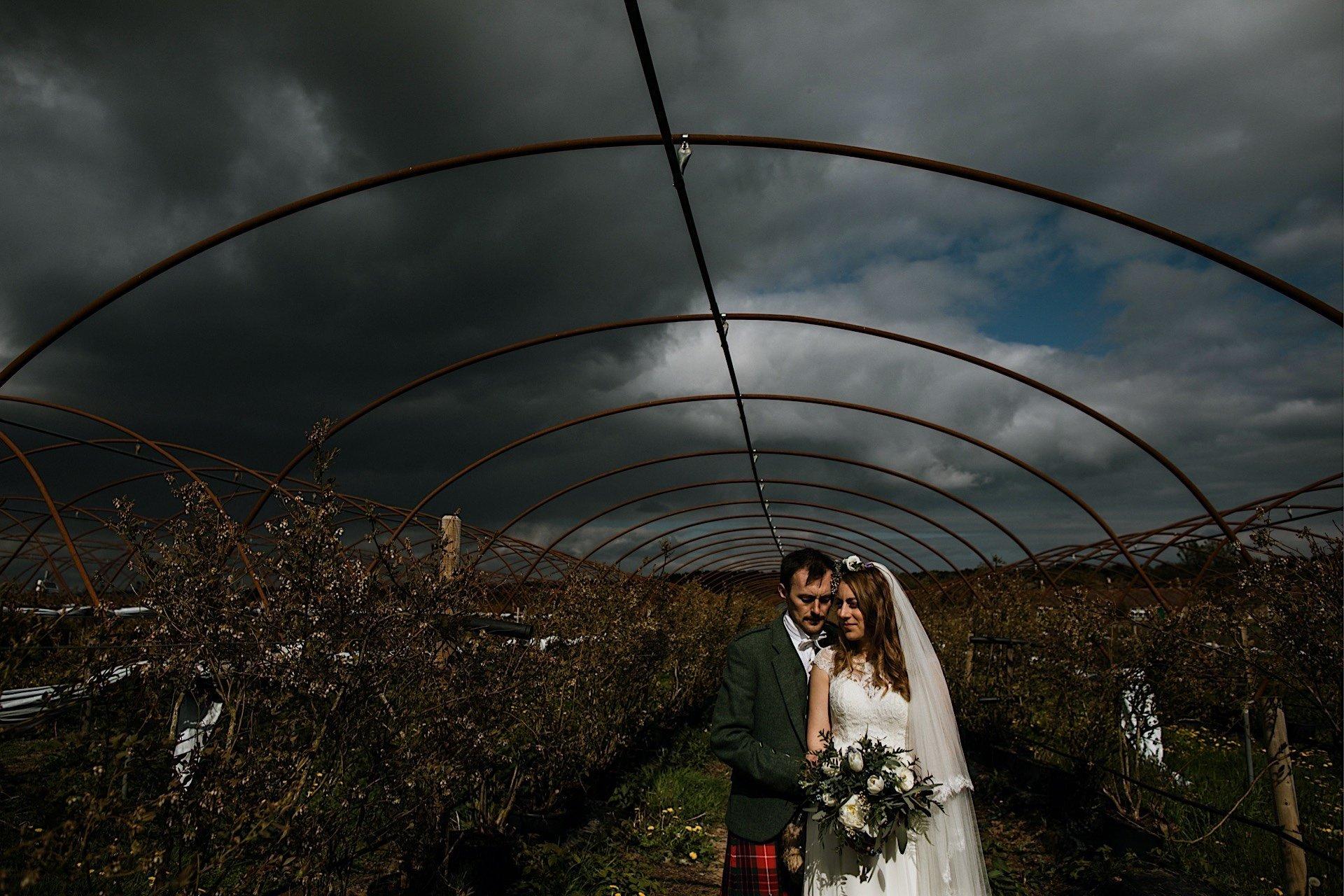 polytunnel bride cuddled groom frame and under