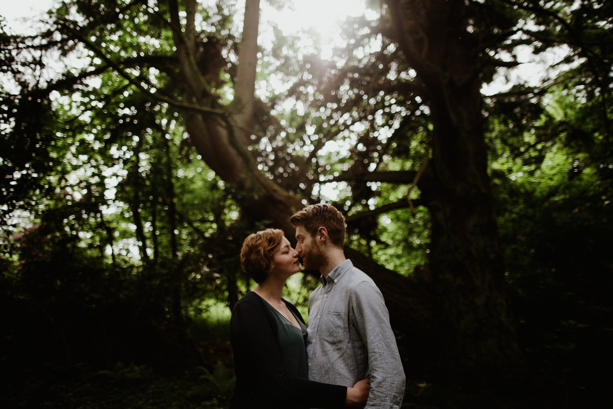 engagement shoot in woodland sun shinging through the trees and couple facing eachother with heads together